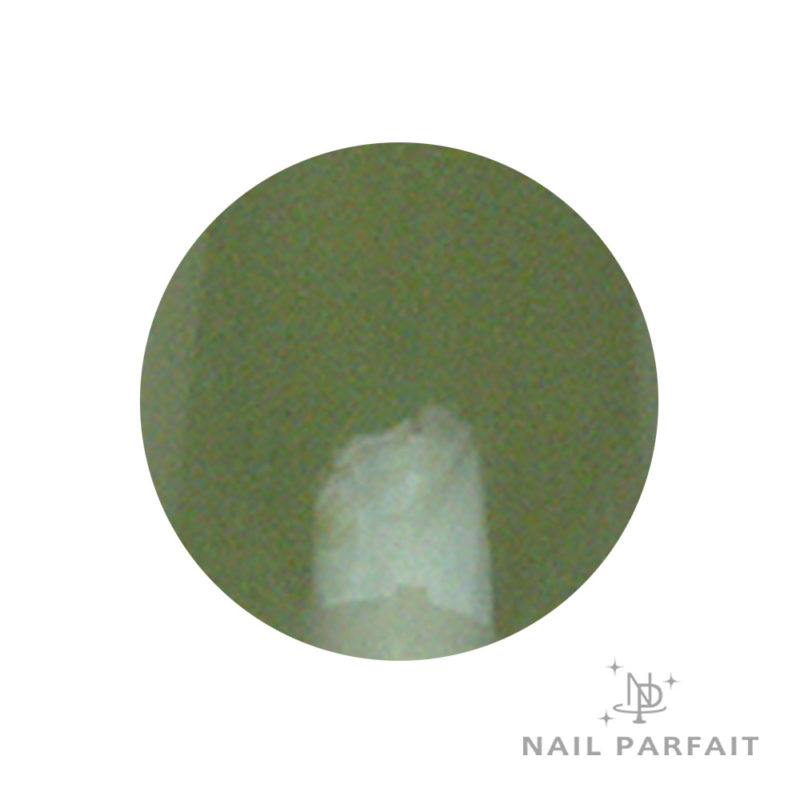 Nail Parfait Color Gel A45 Matcha