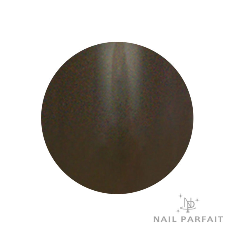 Nail Parfait Color Gel T2 Tall Brown