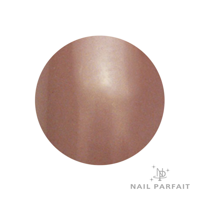 Nail Parfait Color Gel 104 Nature Canel