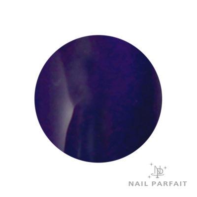 Nail Parfait Color Gel A17 Midnight