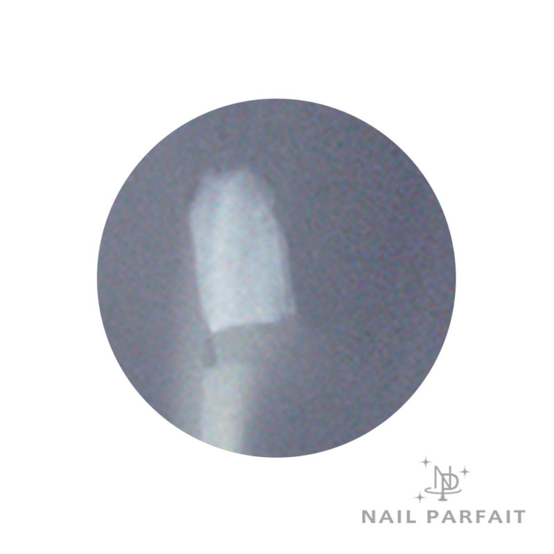 Nail Parfait Color Gel A22 Manati