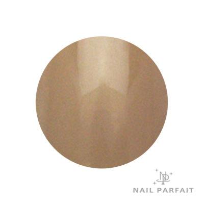 Nail Parfait Color Gel 111 Nature Tail