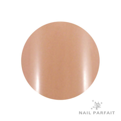 Nail Parfait Color Gel 05 Marron