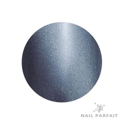 Nail Parfait Magnet Gel S5 Emmanuel Brussels
