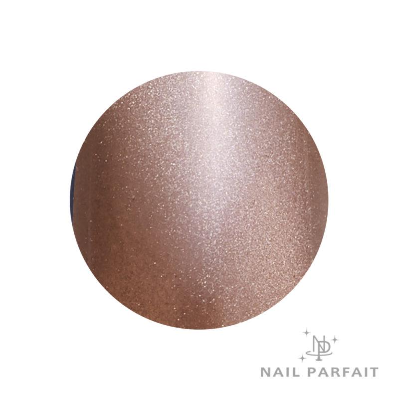 Nail Parfait Magnet Gel S6 Eman Roche