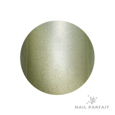 Nail Parfait Magnet Gel S9 Eman Kiwi