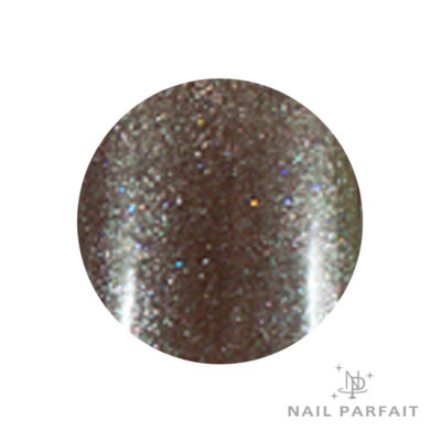 Nail Parfait Premium Color Gel 26 Chocolat