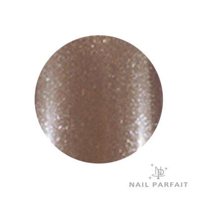 Nail Parfait Color Gel 27 cafe