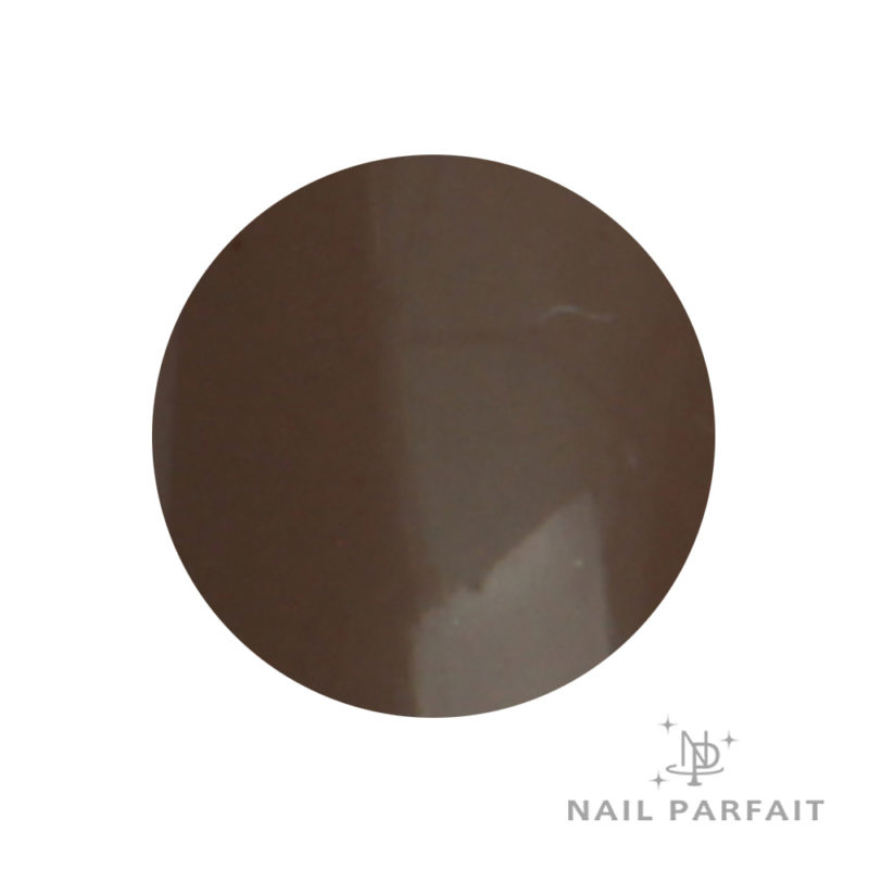 Nail Parfait Color Gel A4 art dark brown