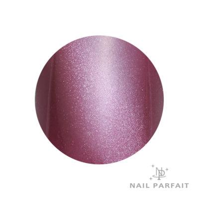 Nail Parfait Magnet Gel S11 Emanvan