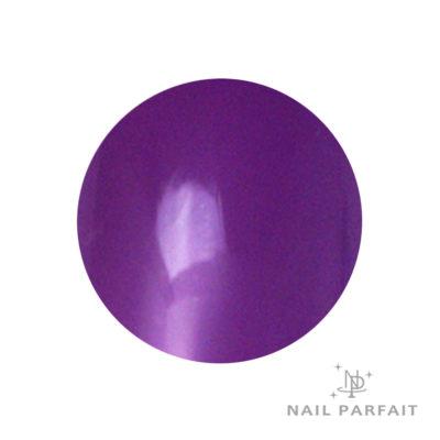 Nail Parfait Clear Color Gel C3 Clear Purple